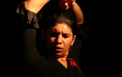 Le Flamenco de Grenade